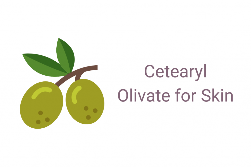 Cetearyl Olivate for Skin