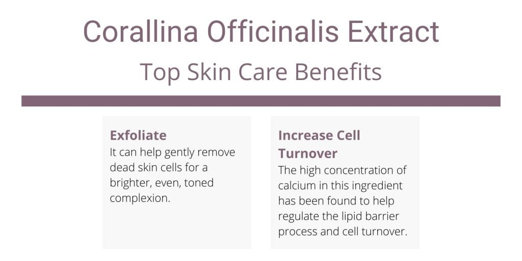 Corallina Officinalis Extract skincare benefits and uses