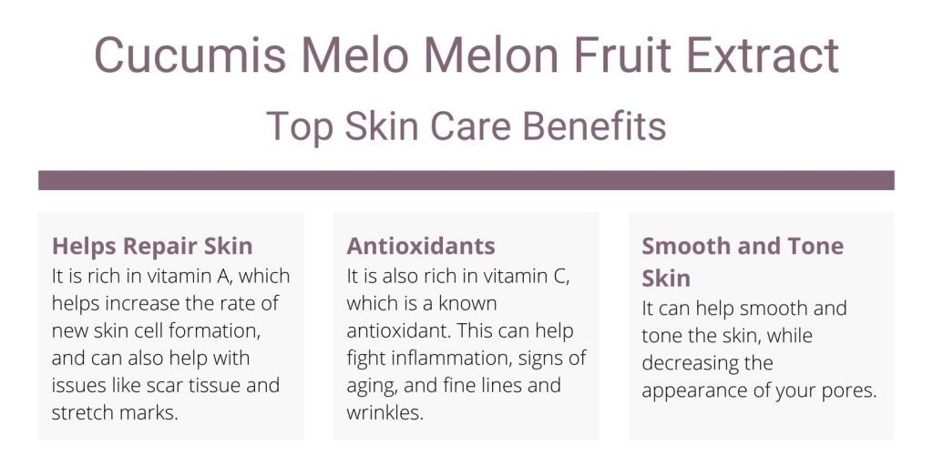 Melon Fruit Extract top skin care benefits