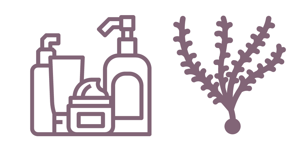 best products with seaweed