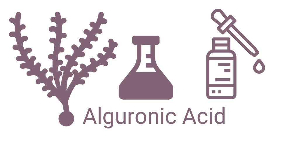 Alguronic Acid for Skin - Top Benefits