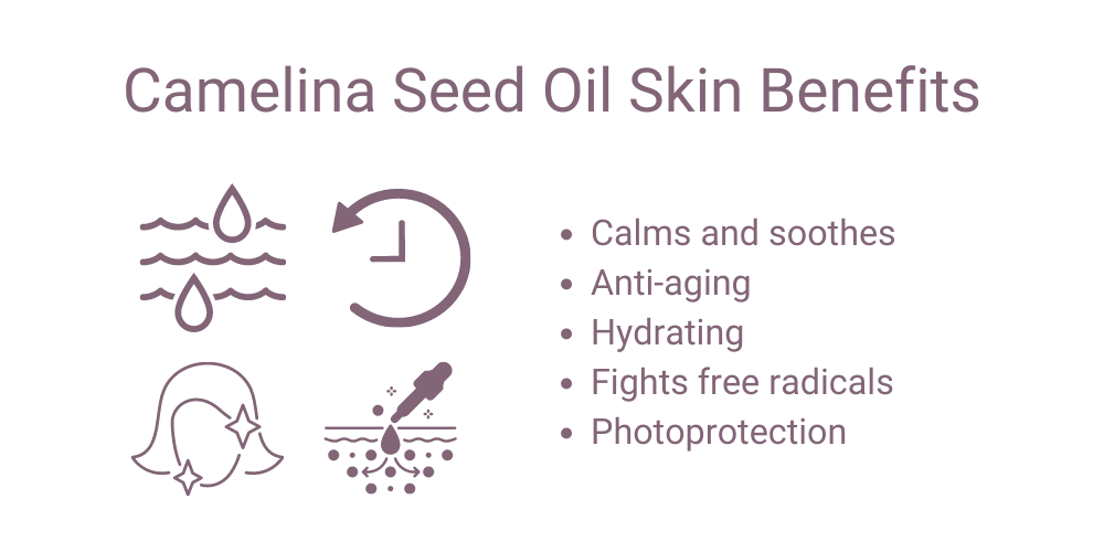 Camelina Seed Oil Benefits for Skin